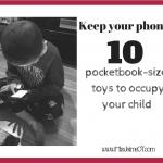 10 pocketbook-sized