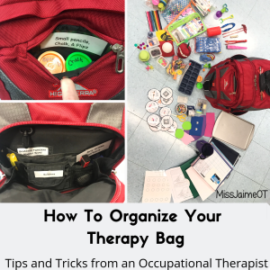 therapy bag, OT supplies, Occupational therapy supplies, pediatric OT,